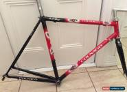 COLNAGO MASTER FRAMESET for Sale