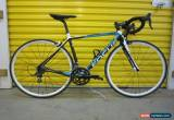 Classic ROADBIKE FOCUS CAYO TEAM AG2R. CARBON FRAME.105 GROUP.GERMAN SUPERLIGHT/FAST.51 for Sale