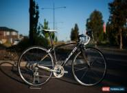 Avanti Cadent full carbon road bike (52cm) for Sale