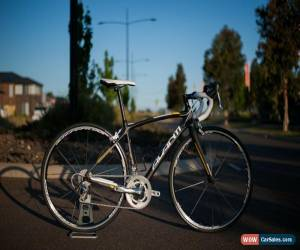 Classic Avanti Cadent full carbon road bike (52cm) for Sale