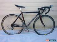 AVANTI PRO SERIES RACING ROAD BIKE. ALLOY FRAME 700C TYRES. for Sale