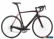 2015 Wilier Cento1 SR Road Bike X-Large Carbon Campagnolo Record CT DT Swiss for Sale