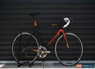 Giant TCR Advanced SL 2018 L for Sale