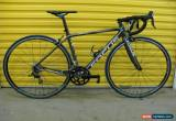 Classic ROADBIKE FOCUS CAYO EVO 2.0. CARBON FRAME.105 GROUPSET.GERMAN SUPERLIGHT/FAST.51 for Sale