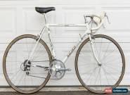 Raleigh Team 753 Technium Dura-Ace Bike Original Gorgeous for Sale
