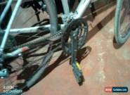Specialized mountain bike for Sale