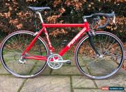 Classic Andy Perks Gents 54cm Road Bike Bicycle Campagnolo Veloce Groupset Mint for Sale
