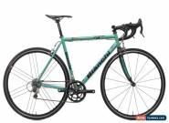2004 Bianchi EV Boron Road Bike 53cm Steel Campagnolo Centaur 10 Speed for Sale