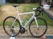 Colnago V1R carbon Road Bike Ferrari for Sale