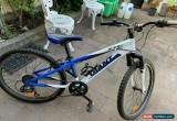 Classic mountain bike for Sale
