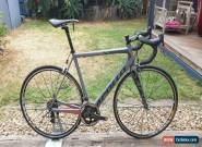 Apollo Elite Team Edition Carbon Road Bike Sram Red 22 Mavic for Sale