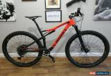 Classic Specialized S-Works Epic Carbon 29er MTB XC Bike Sram Eagle 12 Mavic Storck Trek for Sale