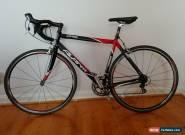 Avanti Corsa road bike - Ultegra - 56.5cm for Sale