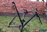 Classic Focus Izalco Max frame, size 54 for Sale