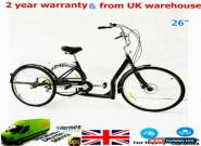 "26"" 6 Speed 3 Wheel Bike Bicycle Adult Tricycle Cruise with Shopping Basket UK for Sale"