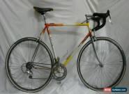 Detto Pietro Polare 58cm Bike Campagnolo Veloce 9 Speed Crimped Steel Tubing for Sale