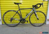Classic ROADBIKE CANNONDALE SUPERSIX EVO.FULL CARBON.SHIMANO GROUP.SUPERLIGHT.AWESOME.51 for Sale