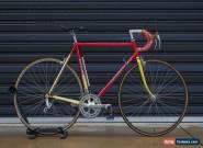 Cichetti 56cm for Sale