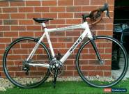 Ridley Damocles Carbon Road Bike for Sale