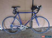 RARE 1980s SPECIALIZED ALLEZ COBALT BLUE STEEL LUGGED ROAD BIKE BICYCLE for Sale