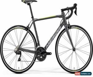 Classic Merida Scultura 400 Mens Road Bike 2019 - Silver for Sale