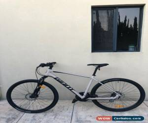 Classic Giant Roam 4 Disc Bike Bicycle for Sale