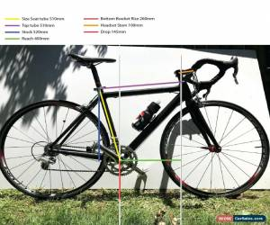 Classic Campagnolo Carbon Road Bike Race Veloce, 7.9kg Low hours ladies mens for Sale