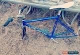 Classic AVANTI EDGE BIKE FRAME for Sale