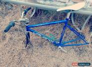 AVANTI EDGE BIKE FRAME for Sale