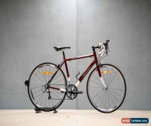 Classic Schwinn Le Tour Elite 54cm 2011 for Sale