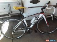 GIANT CARBON ROAD BIKE TCR XS CAMPAGNOLO ATHENA DT SWISS for Sale