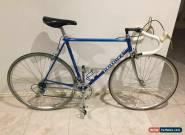 1984 54x54cm Vintage Pinarello Montello Columbus Steel Racing Bike for Sale