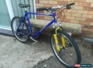 Mountain bike avanti hammer pro comp bike mtb upmarket everything on this  for Sale