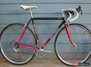 Vintage Serotta Road Bike 49cm w/Campagnolo Group and Wheels, 1990s Paint for Sale
