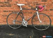 1990 Specialized Allez Epic Carbon Fiber - Vintage Road Bike - 54cm for Sale