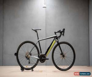 Classic Cannondale Synapse NEO 2 Medium 2019 for Sale