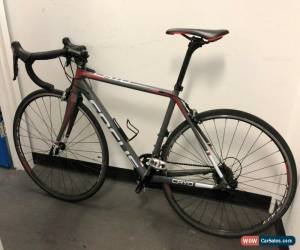 Classic FOCUS CAYO BIKE for Sale
