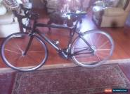specialized roubaix for Sale