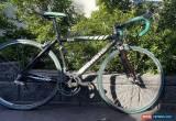 Classic Bianchi 928 carbon road bike (size 51cm) for Sale