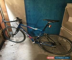 Classic Avanti Giro Road bike for Sale