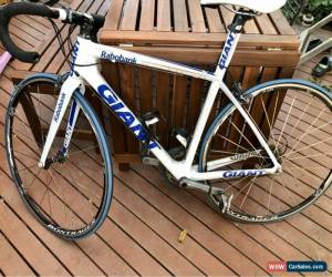 Classic Giant TCR SL0 ISP Rabobank for Sale