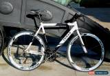 Classic TEMAN  Brand New Hybrid / Racing Road Bike Bicycles- Shimano 21 Speed -white for Sale