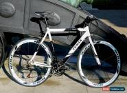 TEMAN  Brand New Hybrid / Racing Road Bike Bicycles- Shimano 21 Speed -white for Sale