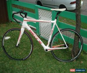 Classic BEONE DIABLO RACE CARBON FIBRE Road Racer Bike for Sale