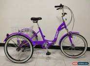 "ADULT TRICYCLE, 24"" WHEELS, 6 SPD SHIMANO GEARS, PURPLE, triciclo, trike, ALLOY for Sale"