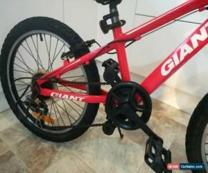 Classic Giant XTC 150 Junior Mountain Bike for Sale