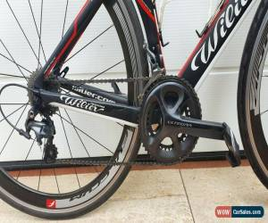 Classic WILIER Cento 1 AIR italian carbon road bike size S SHIMANO ULTEGRA 11sp. FULCRUM for Sale