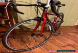 Classic Specialized Allez Elite 52.5cm  Road Bike for Sale