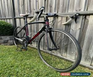 Classic Reid Falco Elite Road Bike - Alloy Frame, Carbon Fork, Shimano 105 for Sale