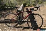 Classic Wilier Triestina GTR Team Road Bike **Immaculate Condition** for Sale